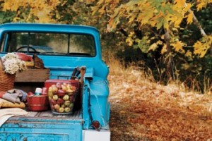 countryliving_tailgate_autumn_picnic